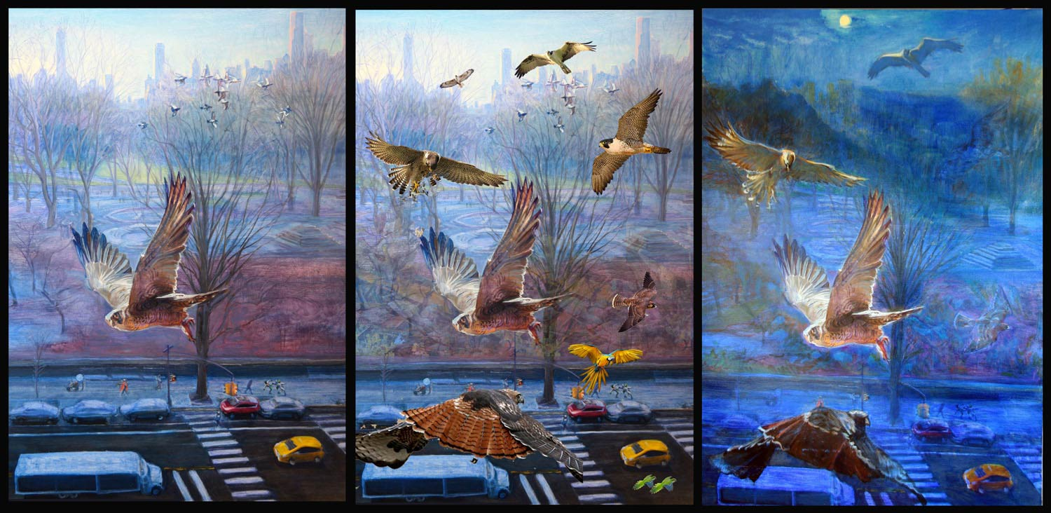 Bird Trio 3 canvases 48 x 34 in each 2016-17