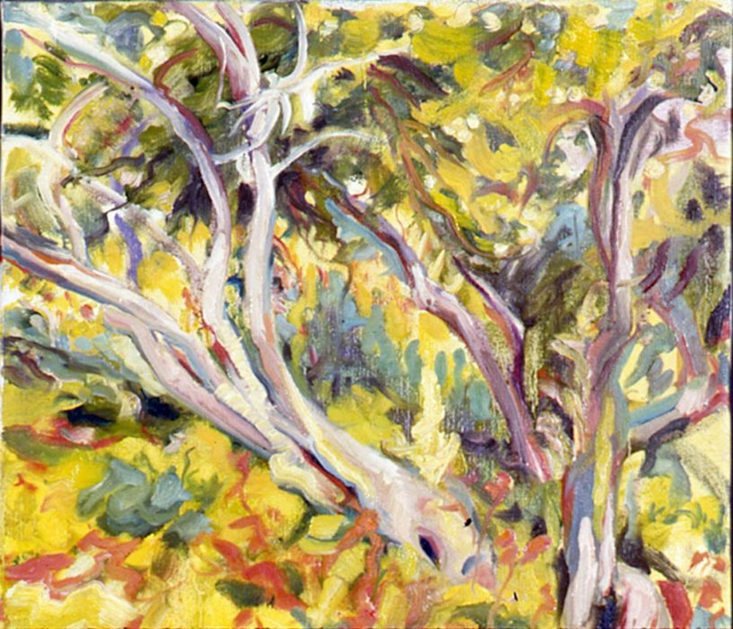 Cali Trees